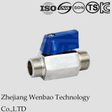 Male Threaded Ss304 Ss316 Butterfly Handle Mini Ball Valve M/M