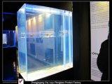 Super Large Ecological Aesthetic Acrylic Aquarium