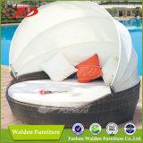 Wicker Sun Bed, Rattan Sun Bed (DH-8602)