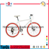 New Design Alloy 700c Fixed Gear Bike/Fixie Bicycle