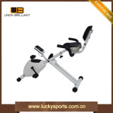 Hot Sale Fitness Home Used Exercise Bike Trainer X Bike for Leg Arm