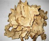 Rhizome Extract