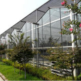 A Glass Greenhouse For Hot Sale