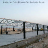 Steel Construction for Poultry House with Good Design and Quality