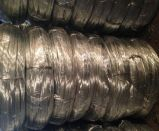 Favorable Price for Galvanized Iron Wire