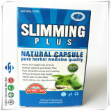 ODM/OEM Natural Plant Garcinia Cambogia Extract Slimming Product