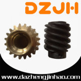 Bronze or Cast Iron Worm Gear