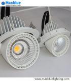 Mini Rotatable COB LED Trunk Down Light 6W/9W