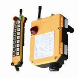 Multi-Channel Wireless Remote Controller for Crane (F21-18S)