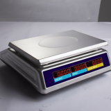 Stainless Steel Waterproof Price Computing Scale with IP68