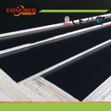 Construction Waterproof Film Faced Plywood