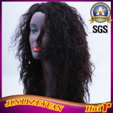 16 Inch Curly Virgin Brazilian Human Hair Wig