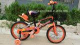 Hot Sales Children Bicycle Sr-Kb107