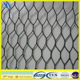 PVC Green Wire Garden Chicken Wire Netting (XA-HM415)
