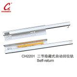 Furniture Hardware Accessories Drawer Slider (CH2201)