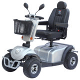 Double Seat Mobility Scooter, 1300W Four Wheels Electric Scooter