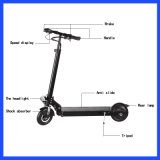 350W Electric Scooter with CE Approval