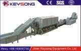 Jinan Manufacturer Standard Semi-Automatic Fresh Potato Chips Making Machine