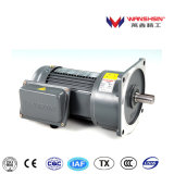 Shaft Dia. 28mm Vertical Mounted 1-Phase Geared Motor with Brake