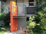 Stainless Steel Disabled Home Lift (VWL)