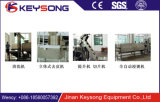 Shandong Ce Standard Semi-Automatic Fresh Potato Chips Machine