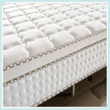 Wholesale Custom Compress Bonnell Spring Hotel Bed Mattress