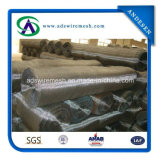 14-18 Mesh Galvanized Insect Screen for Preventing Insect and Mosquito