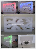 Fancy Carving Inflatable Art Air Wall (MIC-024)