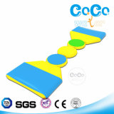 High Quality Cocowater Design Inflatable Wiggle Bridge for Aqua (LG8032)