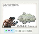 CAS 58-18-4 17A-Methyl-1-Testosterone Steroid Powder with 100% Success Rate to UK, Canada
