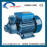 Pm-60 0.75/1HP Peripheral Clean Water Pump