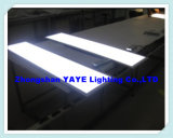 Yaye Good Price 600X1200mm 60W / 68W / 72W LED Panel Light with Warranty 2 Years