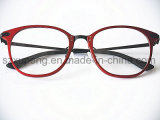 Promotional Model Cheap Aluminumplastic Eyeglasses Optical Frame