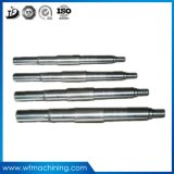 OEM Stainless Steel Spur/Helical Gear Shaft Worm Gear Shaft