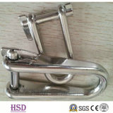 Stainless Steel 316 D Type Shackle for Marine Hardware