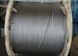 Glavanized Wire Rope 6X36 with Steel Core