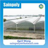 Cheap Price Plastic Film Multi-Span Greenhouse for Tomato
