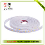 Rope Light with ETL CE RoHS and 3 Years′ Warranty