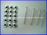 Roof Screw with Washer Wholesale