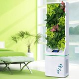 Am: 10 Micro Forest Ecological Air Purifier Mf-S-8800-W