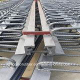 Strong Resistance Rubber Bridge Expansion Joint (Hot sale)