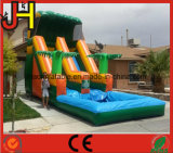 Commercial Tropical Inflatable Slide Water Park for Sale