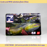 Club Gift Card Made of PVC with Magnetic Stripe (ISO7811)