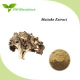 ISO SGS Certified 100% Natural Grifola Frondosa Extract/Maitake Extract for Anticancer