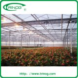 Commercial glass greenhouse with climate control system