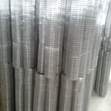 "1/2"" PVC Coated Welded Mesh"