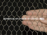 Galvanized Chicken Wire (Direct Factory Price)