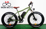 48V 500W Hot Sale Big Power Fat Tire Snow Mountain E Bike