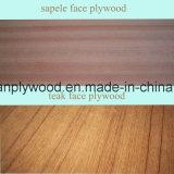 Oak/Sapele/Ash/Teak Veneer Fancy Plywood/Furniture Plywood/Decoration Plywood