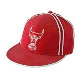 Fashion Sport Cap Snapback (JRN020)